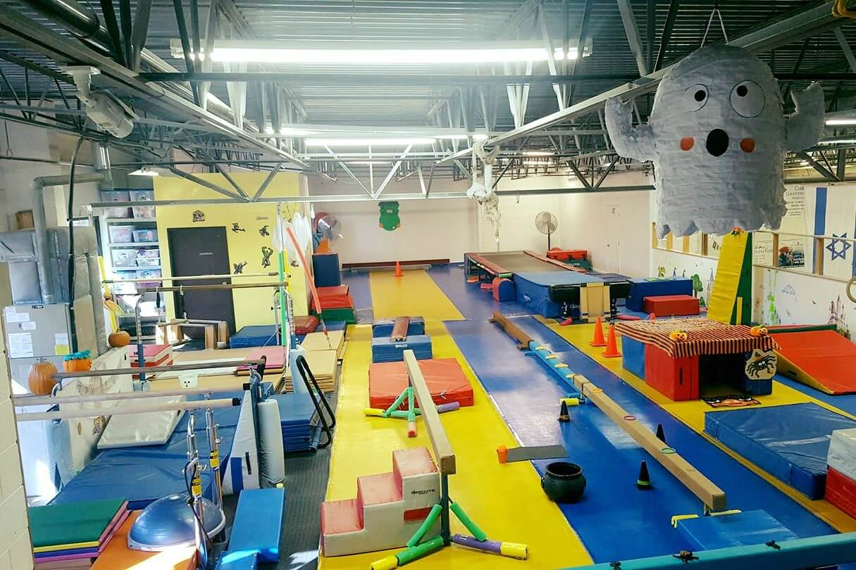 Image Result For Gymnastics Classes In Detroit Michigan