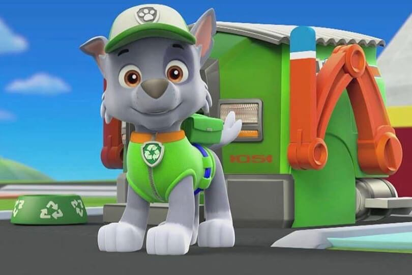 Rocky Recycles With His Paw Patrol Pals
