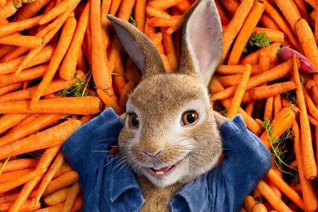 Movie In The Park – Peter Rabbit