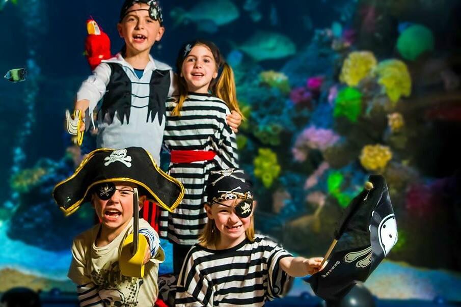 https://www.facebook.com/SEALIFEMichigan/photos/a.530479713730816/1687555708023205/?type=3&theater