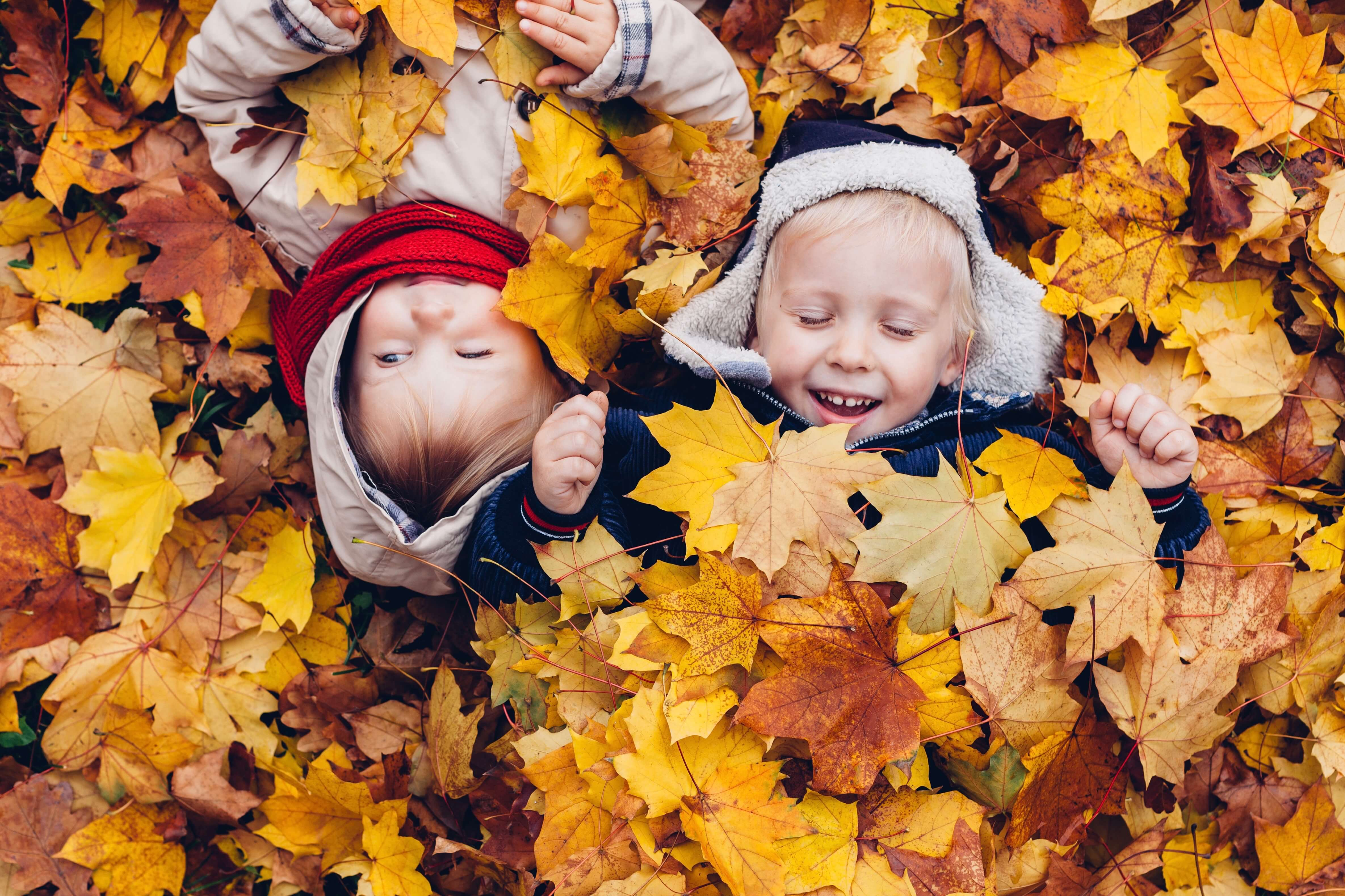 Top Things to do with KIDS in November 25ffc78ea