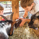 Top Things To Do With KIDS This Weekend: April 26-28