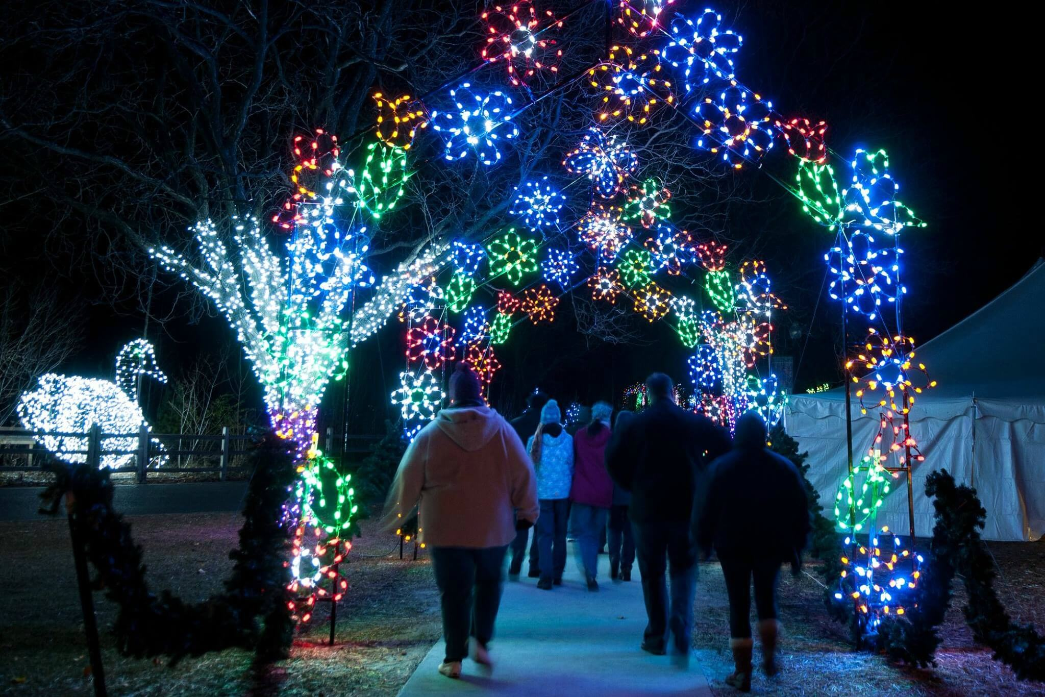 Hines Drive Christmas Lights 2020 Where To See Christmas Lights In Metro Detroit