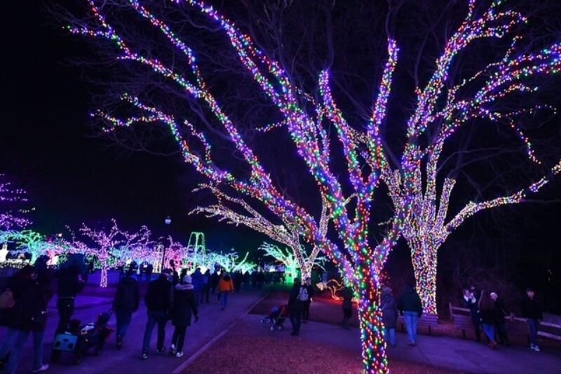 Royal Oak Christmas Light Ceremony 2021 Our Favorite Family Friendly Holiday Events In Metro Detroit 2020